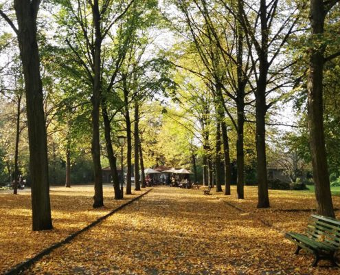 Sommerlust Herbstblick